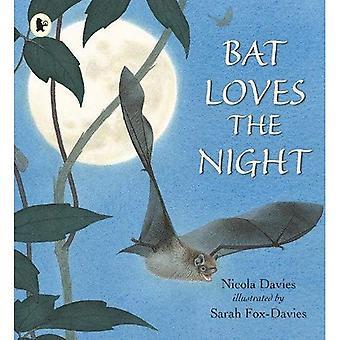 Bat aime la nuit