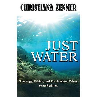 Bara vatten: Teologi, etik och globala vatten kriser (ekologi och rättvisa)
