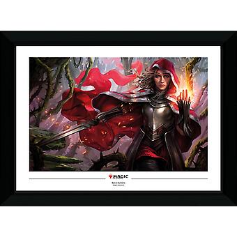Magic the Gathering Rowan Collector Print 50x70cm