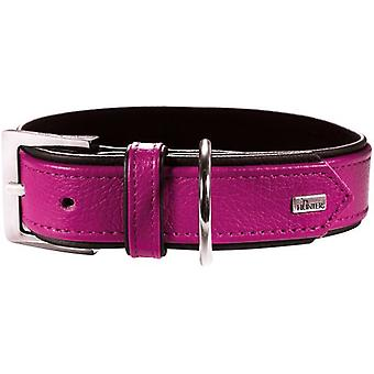 Hunter Collar Capri Raspberry and Black (Dogs , Collars, Leads and Harnesses , Collars)
