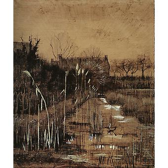 Vincent Van Gogh - Ditch, 1884 Poster Print Giclee