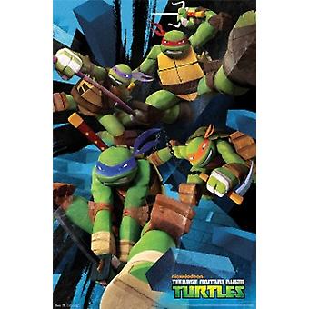 Teenage Mutant Ninja Turtles Attack Poster Poster Print