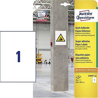 Avery-Zweckform L7877-20 Labels (A4) 210 x 297 mm Paper