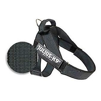 Julius K9 IDC Color & Gray Belt Harness (Dogs , Collars, Leads and Harnesses , Harnesses)