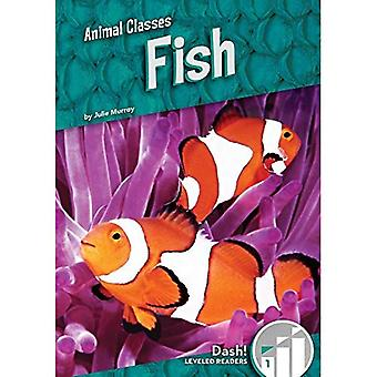 Fish (Pet Care)