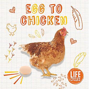 Life Cycle of a Chicken by Kirsty Holmes - 9781786372833 Book