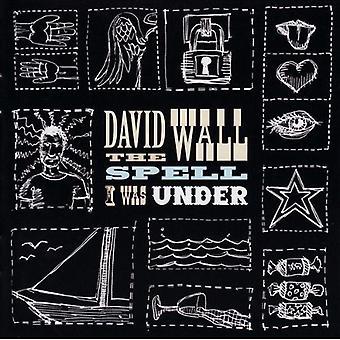 David Wall - stav jeg var Under [CD] USA import