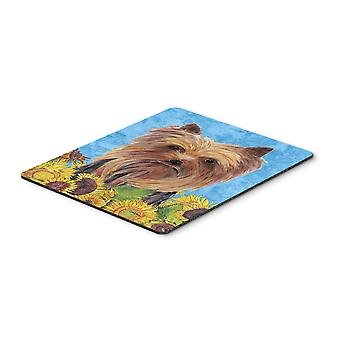 Carolines Treasures  SC9060MP Yorkie Mouse Pad, Hot Pad or Trivet