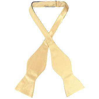 Biagio SELF TIE Bow Tie Solid Men's BowTie