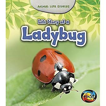 Life Story of a Ladybug (Animal Life Stories)