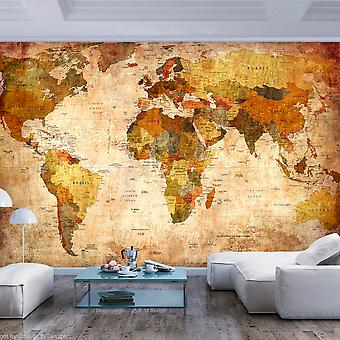 Wallpaper - Old World Map