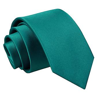 Boy's Plain Teal Satin Tie (8+ years)