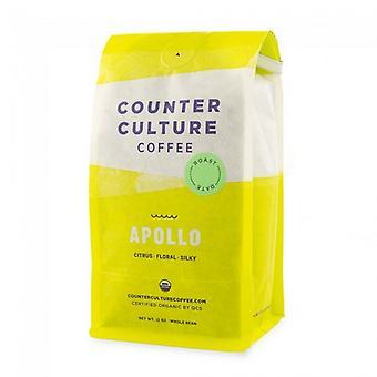 Counter kultur kaffe Apollo hela kaffebönor