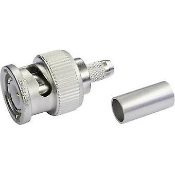 Conector BNC enchufe recto 75 Ω Telegärtner J01002M1288Y 1 PC