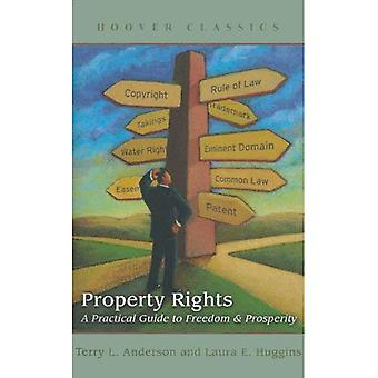 Property Rights (Reissue)