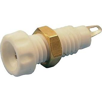 Jack socket Socket, vertical vertical Pin diameter: 4 mm White Cliff CL1464A 1 pc(s)