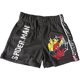 Marvel Spiderman Boys Summer Shorts