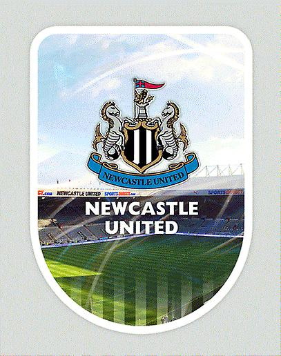 Newcastle United Universal Skin Large