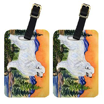 Carolines Treasures  SS8183BT Pair of 2 Great Pyrenees Luggage Tags