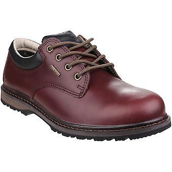 Cotswold Mens Stonesfield vattentät läder promenader vandringsskor
