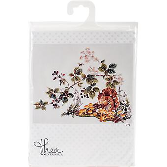 Squirrel On Aida Counted Cross Stitch Kit-18.75