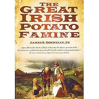 Der großen irischen Hungersnot