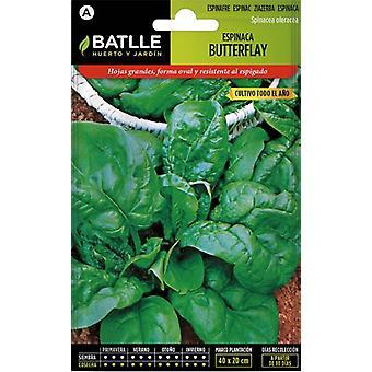 Batlle Spinat Schmetterling (Garten , Gartenarbeit , Saatgut)