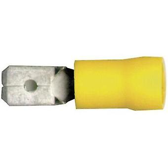 Blade terminal Connector width: 6.3 mm Connector thickness: 0.8 mm 180 ° Partially insulated Yellow Vogt Verbindungstec