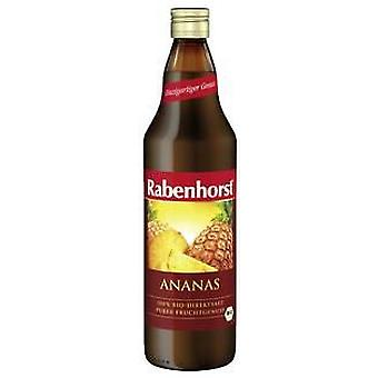 Rabenhorst Pineapple Juice 750Ml. (Dietetics And Nutrition , For Drinking)