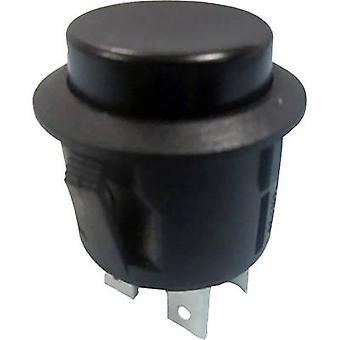 Pushbutton switch 250 V AC 6 A 2 x On/Off SCI R13-