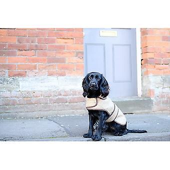 Jasper dog coat