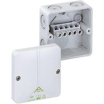 Spelsberg 49040201 Joint box (L x W x H) 80 x 80 x 52 mm Grey IP65