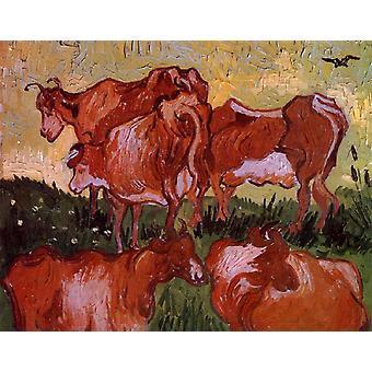 الأبقار، فنسنت فإن جوخ، 55x65cm