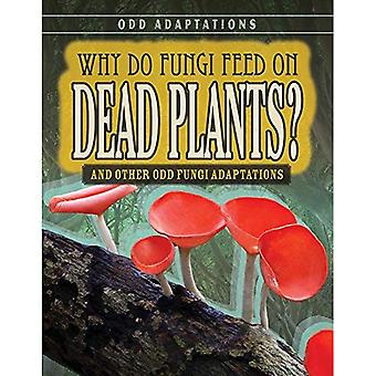 Why Do Fungi Feed on Dead� Plants?: And Other Odd Fungi Adaptations (Odd Adaptations)