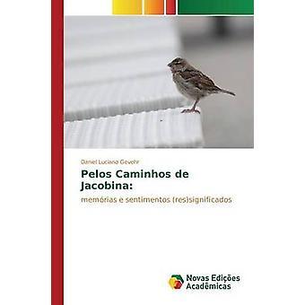Pelos Caminhos de Jacobina par Daniel Luciano Gevehr