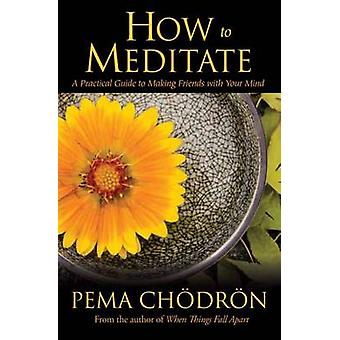 How to Meditate - A Practical Guide to Making Friends with Your Mind b