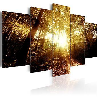 Lærred print-efterår skov