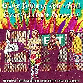 Gaye Bykers on Acid - Everythings Groovy [CD] USA import