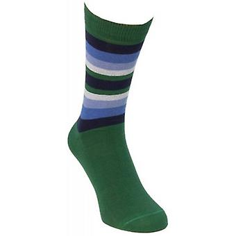 40 Colori Gradient Striped Socks - Dark Green