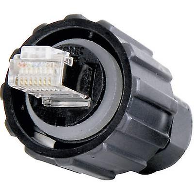 Conec 17-100464 RJ45 Plug, mount