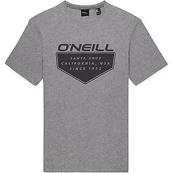 O'Neill Men's T-Shirt ~  Cruz silver