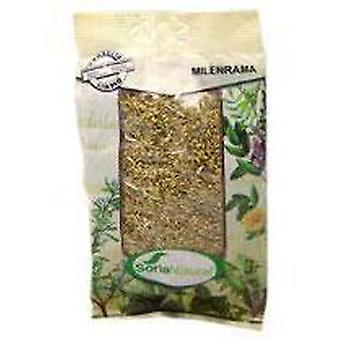 Soria Natural Yarrow