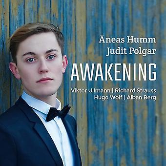 Berg / hum / Polgar - opvågnen [CD] USA import
