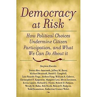 Democracy at Risk: How Political Choices Undermine Citizen Participation, and What We Can Do about It