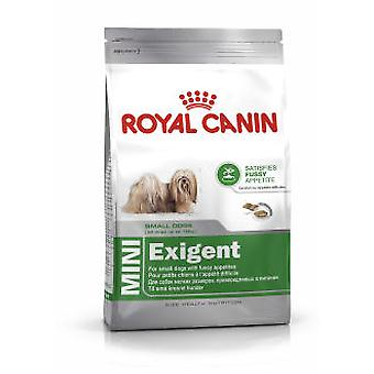 Royal Canin Mini Exigent (Dogs , Dog Food , Dry Food)