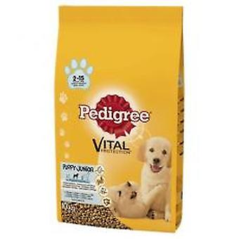 Pedigree Dry Vital Protection Puppy With Chicken And Rice 900g