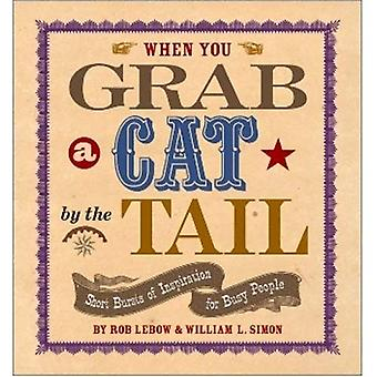 When You Grab a Cat by the Tail: Short Bursts of Inspiration for Busy People