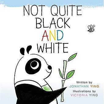 Inte riktigt svart och vitt [styrelse bok]