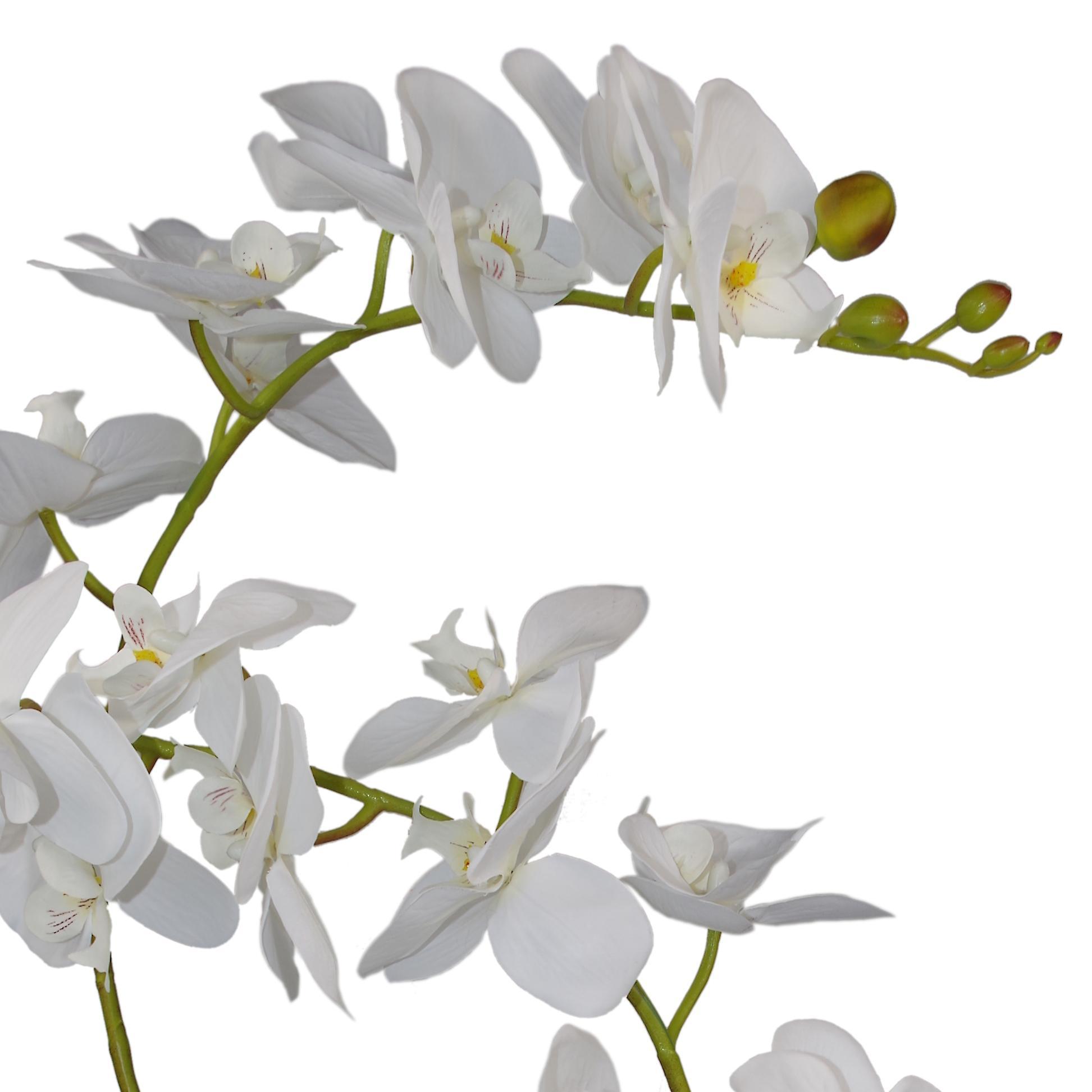 65cm Artificial Luxury Artificial Orchid - 3 Stems - Soft White Plant