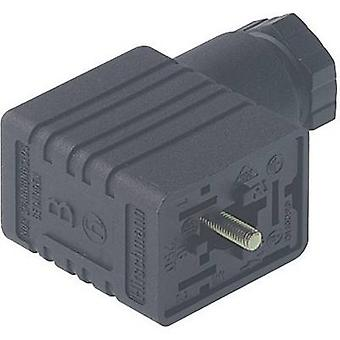 Hirschmann 934 456-100 GM 216 NJ Cable Socket, Freely Configurable Black Number of pins:2 + PE